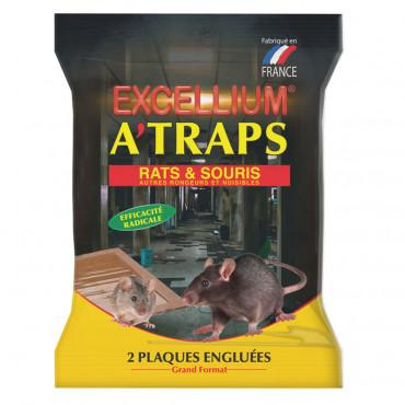 A'TRAPS Excellium plaques engluées anti-rongeurs rats et souris